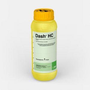 Dash HC
