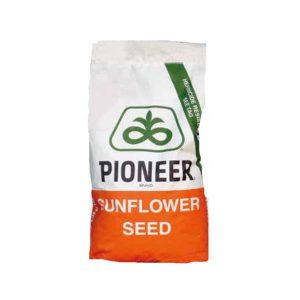 Υβρίδια Ηλίανθου Pioneer P64HE133 Hight Oleic