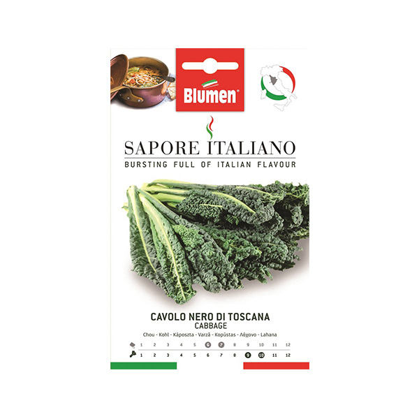 Λαχανίδα Σγουρή Kale – Nero Di Toscana