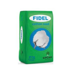 Ποικιλία Βαμβακιού Fidel